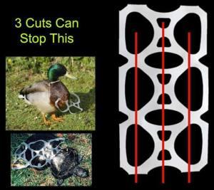 cut the loops