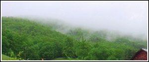 Morning mist long