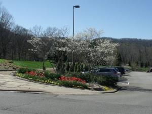 4 2 16 parking lot